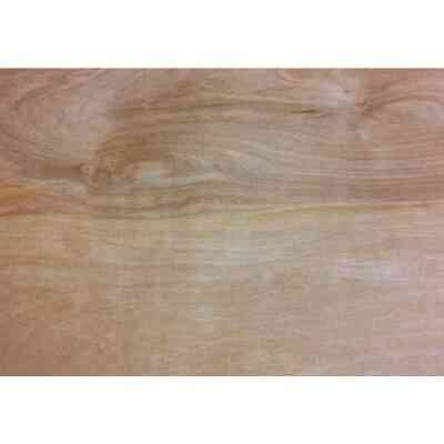 Universal Forest Products 3/8 In. x 24 In. x 48 In. Birch Plywood Panel