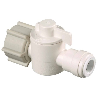 Watts 1/2 In. FPT X 3/8 In. CTS Plastic Push Valve